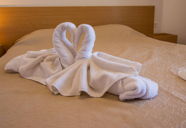 hotel-elegant-lodge-bansko-vidove-apartamenti-dvuspalen-galeriya (4)