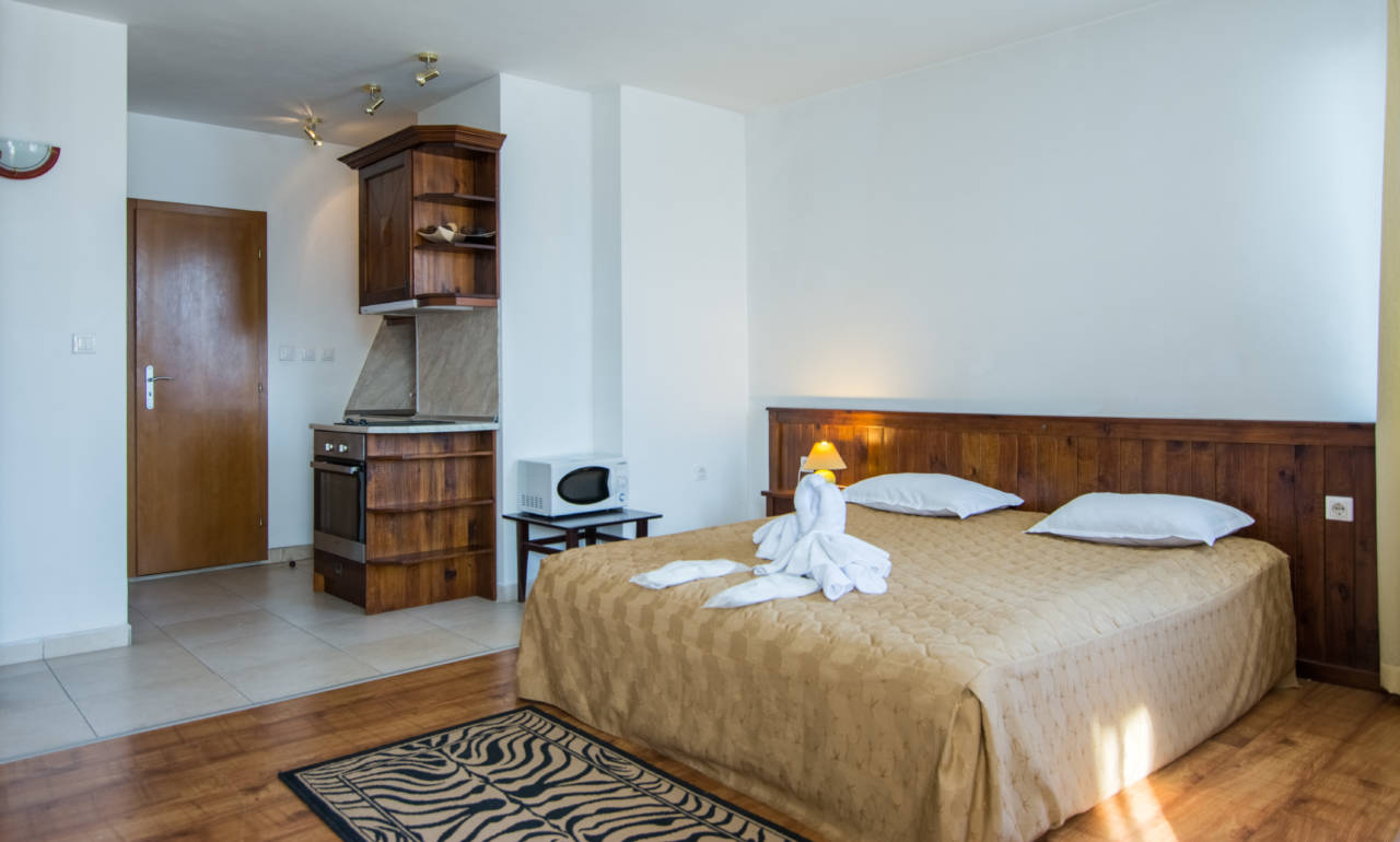 hotel-elegant-lodge-bansko-vidove-apartamenti-studio-galeriya (1)