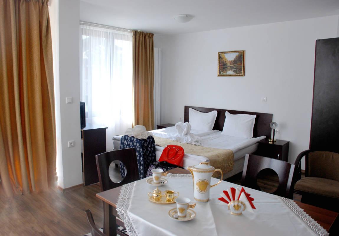 hotel-elegant-luks-bansko-vidove-apartamenti-dvuspalen-galeriya (12)
