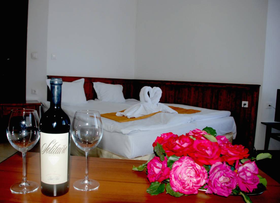 hotel-elegant-luks-bansko-vidove-apartamenti-studio-galeriya (5)